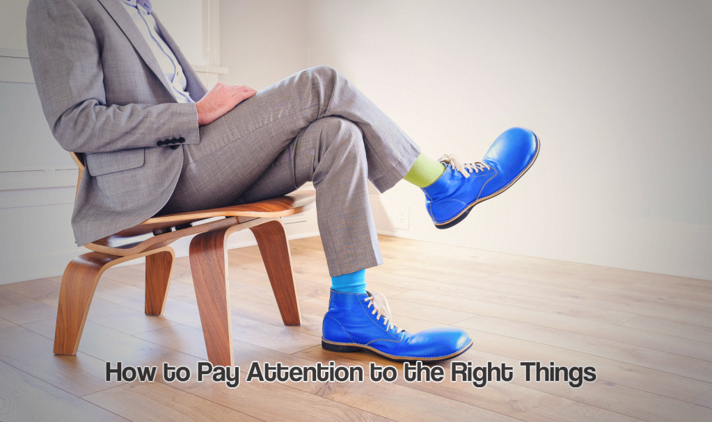 How to Pay Attention to the Right Things